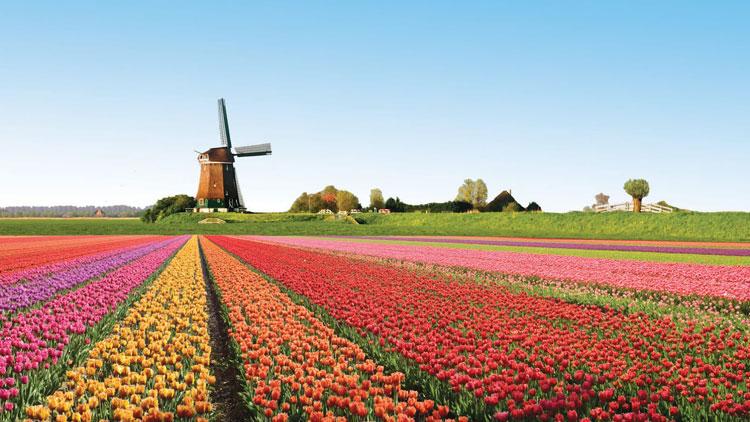 Chuyển phát nhanh đi Hà Lan giá rẻ chuyên nghiệp