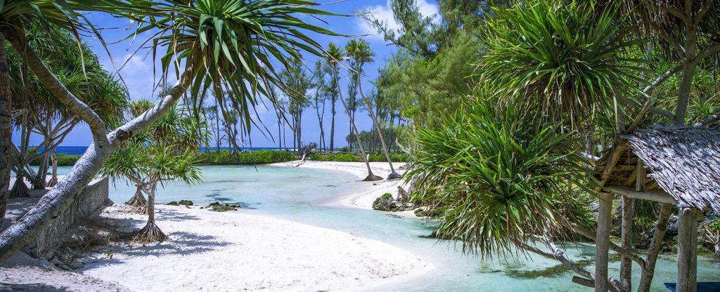 Dịch vụ chuyển phát nhanh DHL đi Vanuatu giá rẻ.